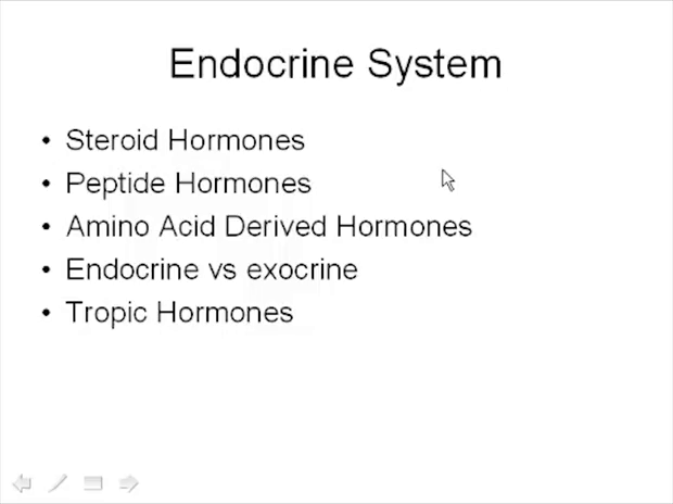 Endocrine System Intro Endocrine Series Magoosh Mcat This video also describes the development and histology of. magoosh mcat